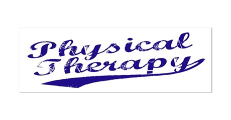 Physical Therapy Mini Poster Print