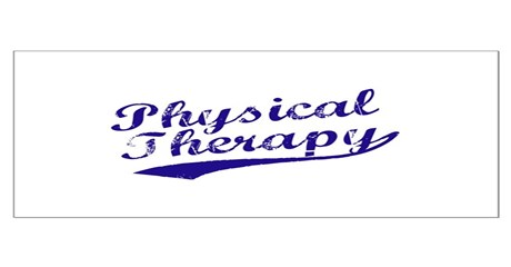 Physical Therapy Large Poster