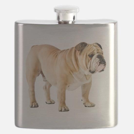 Unique English bulldog Flask