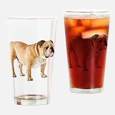 Unique English bulldog Drinking Glass
