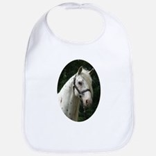Spanish Jennet Stallion Bib