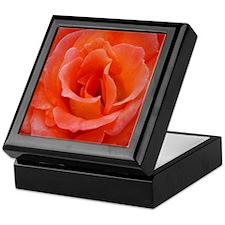 Huge Peach Rose Keepsake Box