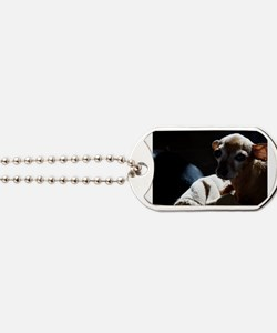 Cute Chiweenie dog Dog Tags
