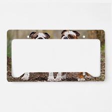 Cute Bulldogs License Plate Holder