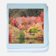 Autumn splendour, Adelaide Hills 2 baby blanket