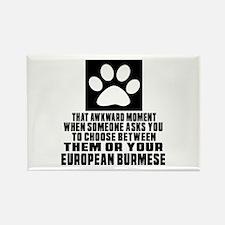 Awkward European Burmese Cat Desi Rectangle Magnet