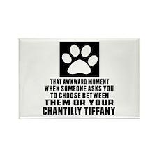 Awkward Chantilly Tiffany Cat Des Rectangle Magnet
