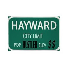 HAYWARD Rectangle Magnet