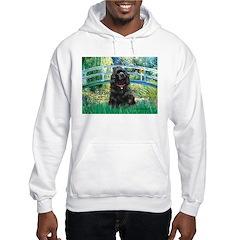 Bridge / Black Cocker Spaniel Hoodie