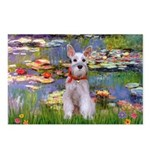 Lilies / M Schnauzer Postcards (Package of 8)