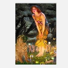 Fairies / Shar Pei Postcards (Package of 8)