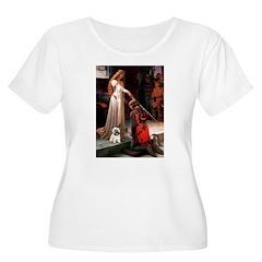 Accolade / Cairn T-Shirt