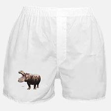 Hippo Hippopotamus Boxer Shorts