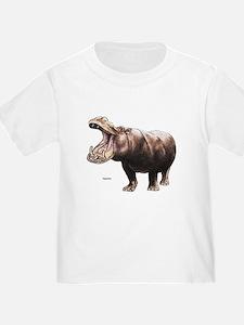 Hippo Hippopotamus (Front) T