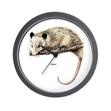Opossum Possum Wall Clock
