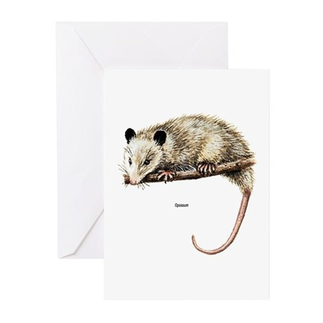 Opossum Possum Greeting Cards (Pk of 10)
