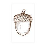 Acorn 50 Pack