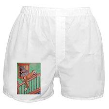 Bubba the Sock Monkey Boxer Shorts
