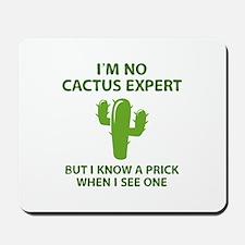 I'm No Cactus Expert Mousepad
