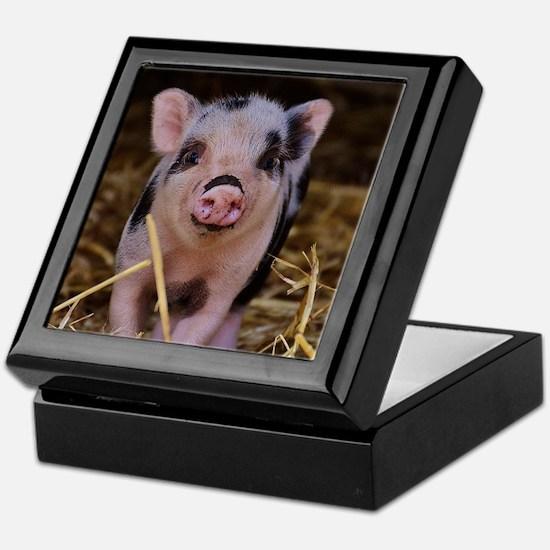 Sweet Cute Pig Keepsake Box