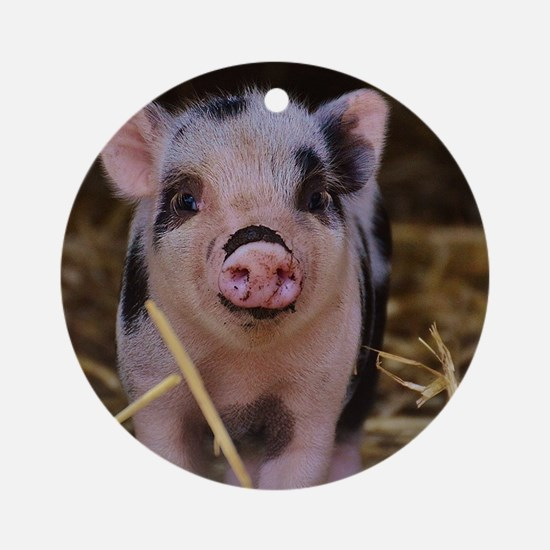 Sweet Cute Pig Round Ornament