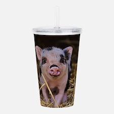 Sweet Cute Pig Acrylic Double-wall Tumbler