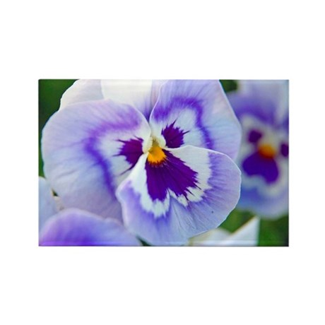 Purple Pansy Rectangle Magnet (10 pack)