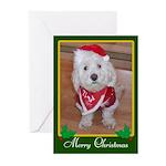 Christmas Dog Greeting Cards (Pk of 20)