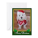 Christmas Dog Greeting Cards (Pk of 10)