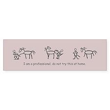 I am a Professional: Farrier / Bumper Car Sticker