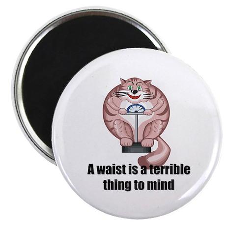 """Diet Cat 2.25"""" Magnet (10 pack)"""