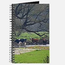 Cows in a Scenic Farm Field Journal