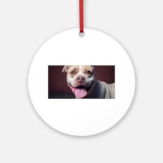Pitbull Round Ornament