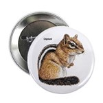 Ground Squirrel Chipmunk Button