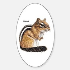 Ground Squirrel Chipmunk Oval Decal