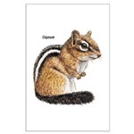 Ground Squirrel Chipmunk Large Poster