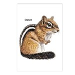 Ground Squirrel Chipmunk Postcards (Package of 8)