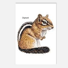 Ground Squirrel Chipmunk Postcards (Package of 8)