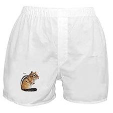 Ground Squirrel Chipmunk Boxer Shorts