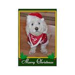 Christmas Dog Rectangle Magnet (10 pack)