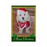 Christmas Dog Rectangle Magnet (100 pack)