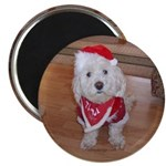Christmas Dog Magnet