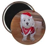 Christmas Dog 2.25