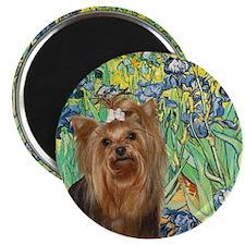 Irises & Yorkie #7 Magnet