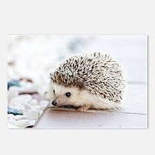 Cute Hedgehog Postcards (Package of 8)