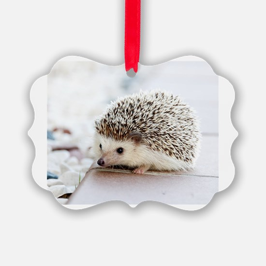 Cute Hedgehog Ornament