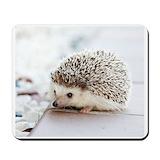 Cute hedgehog Classic Mousepad
