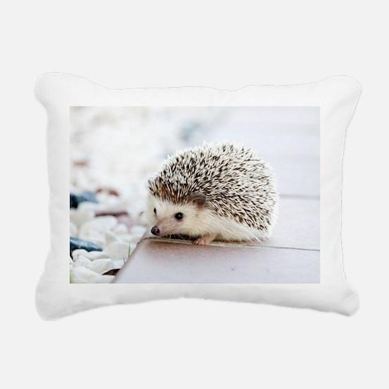 Cute Hedgehog Rectangular Canvas Pillow
