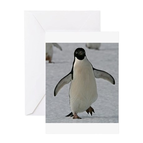 Adelie Penguin Greeting Card