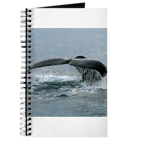 Whale Fluke Journal